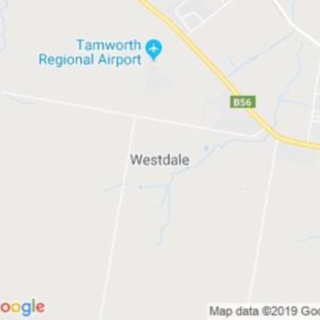 Westdale, NSW field guide