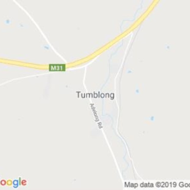 Tumblong, NSW field guide