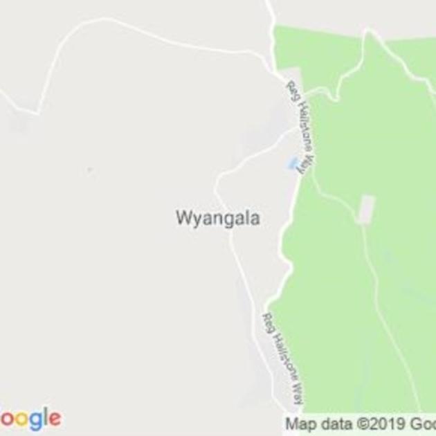 Wyangala, NSW field guide