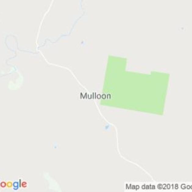 Mulloon, NSW field guide