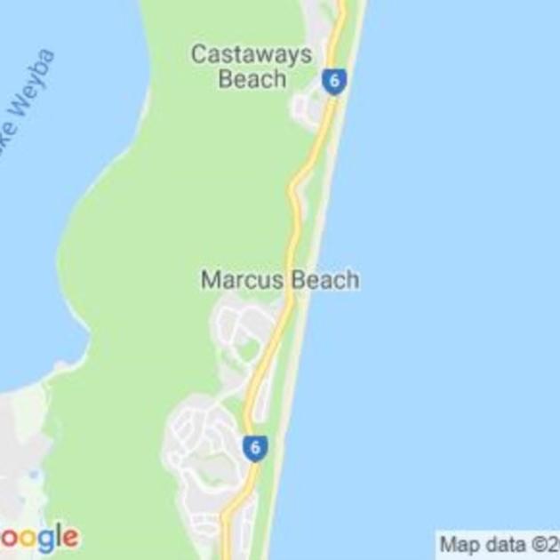 Marcus Beach, QLD field guide