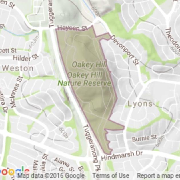 Oakey Hill field guide