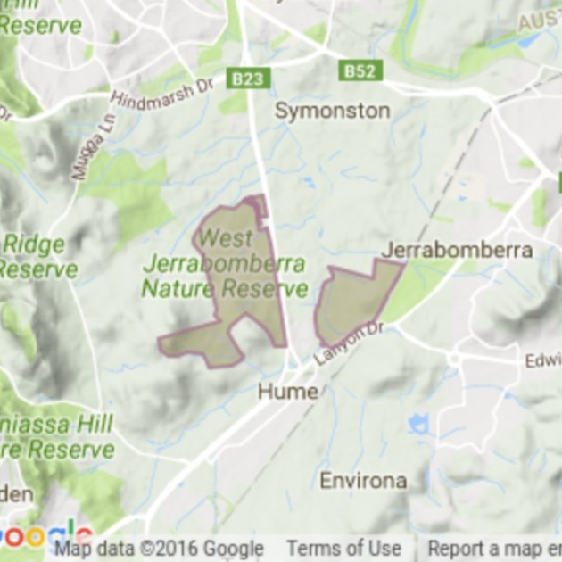 Jerrabomberra Grassland field guide
