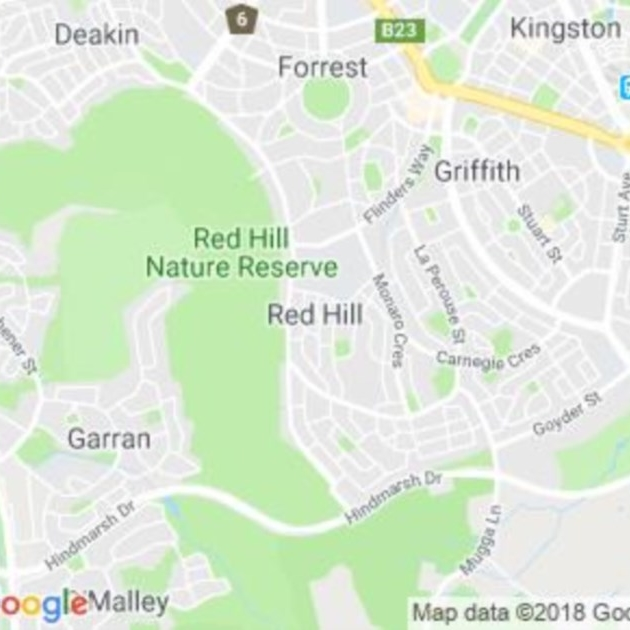 Red Hill, ACT field guide