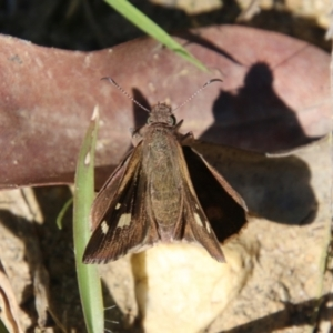Unidentified at suppressed - 11 Apr 2021