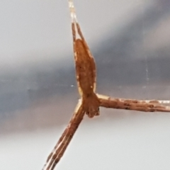 Unidentified at suppressed - 4 May 2021